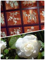 大阪福島の占いサロン観音庵 花の天井 平岡八幡宮