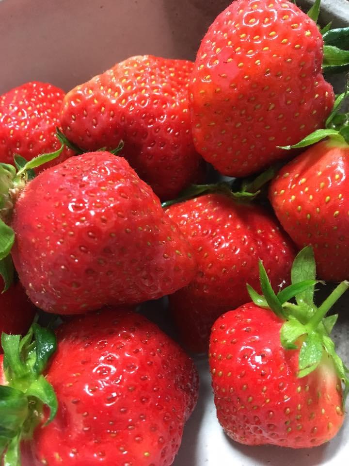 イチゴのようなあま~い恋