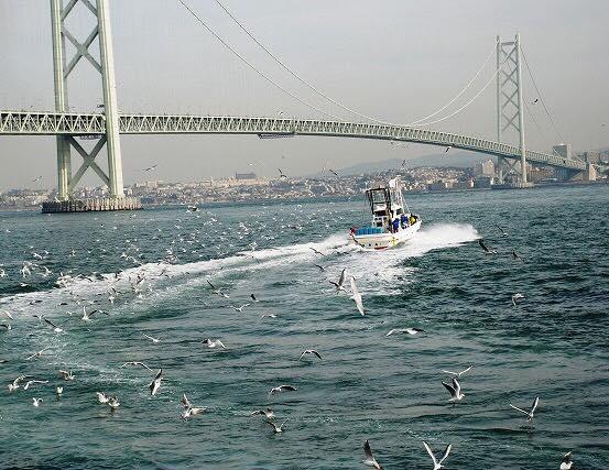 いかなご漁