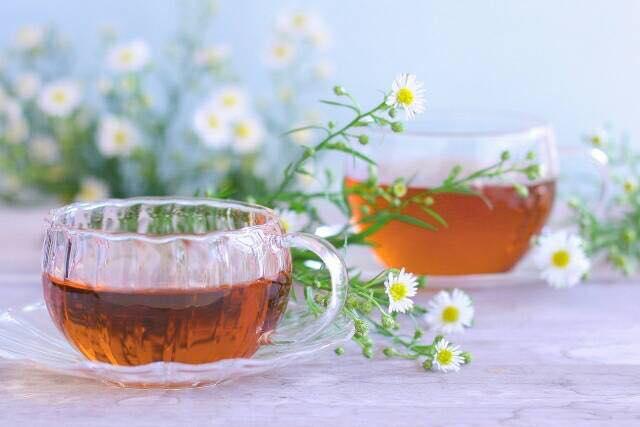 4月9日の日曜日は福島店にてお茶会開催です♪