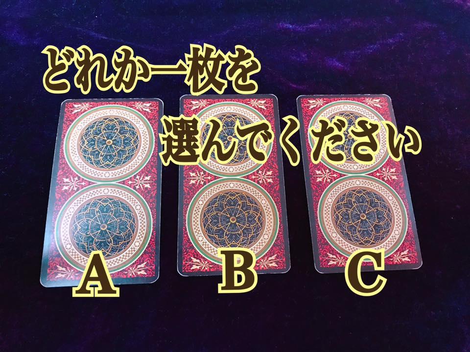 どれか一枚を選んで下さい